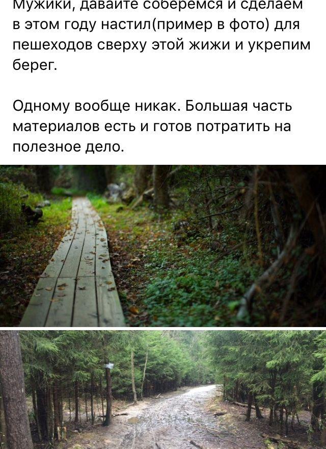 Помост на месте лесной тропинки своими руками  (7 фото)