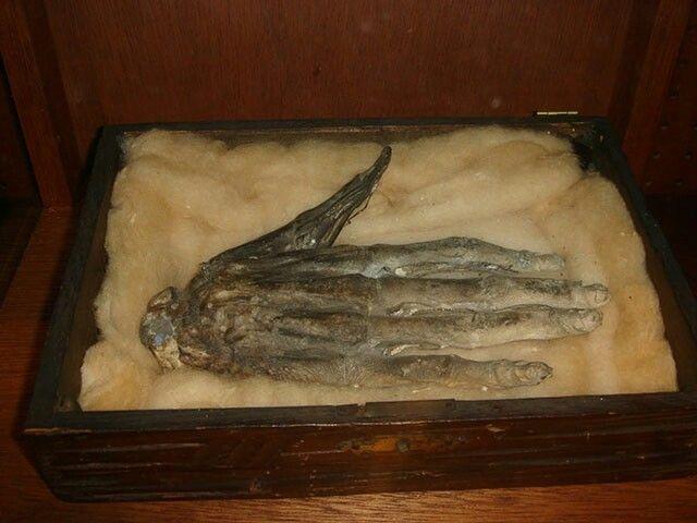 Рука славы - жуткий артефакт разбойников (4 фото)