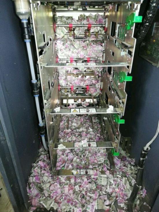 В Индии крысы уничтожили более миллиона рупий (2 фото)