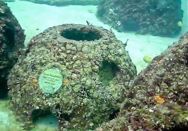 Что это за конструкции в Карибском море? (4 фото)