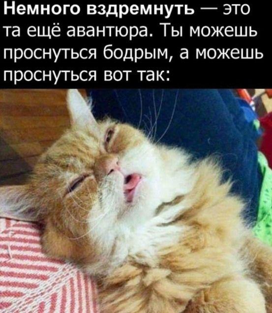 podborka_vecher_19.jpg