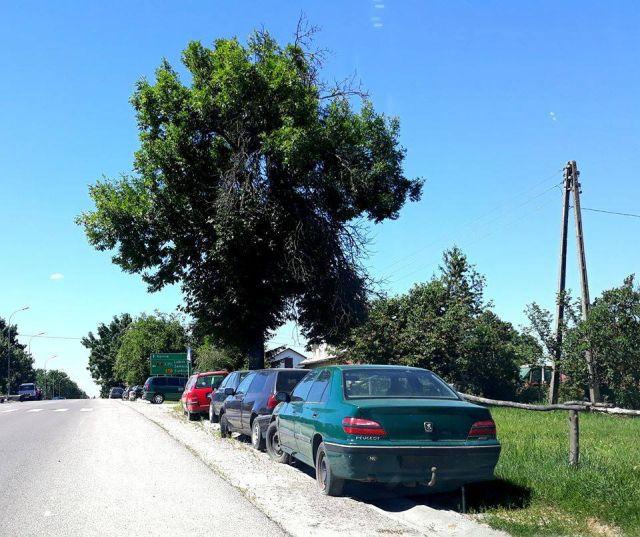 Польское село превратилось в свалку брошенных автомобилей (15 фото)