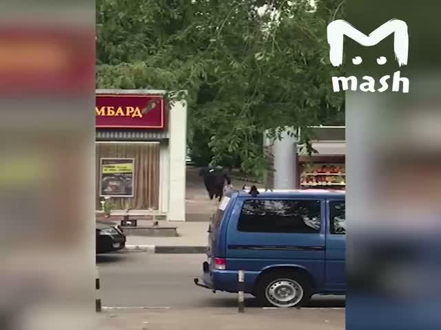 Ограбление ломбарда в Балашихе