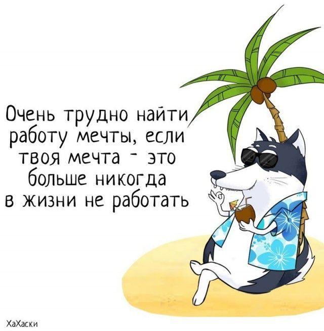 Забавные комиксы из жизни Хаски Карла (24 картинки)
