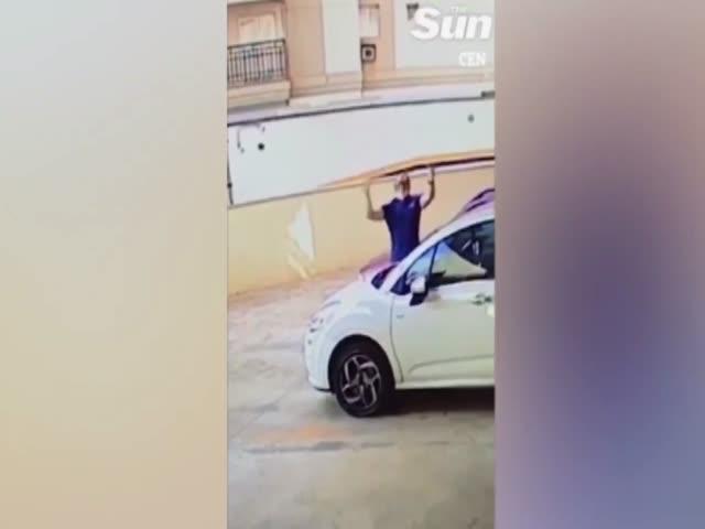 Бразилец поймал собаку, выпрыгнувшую с 9-го этажа