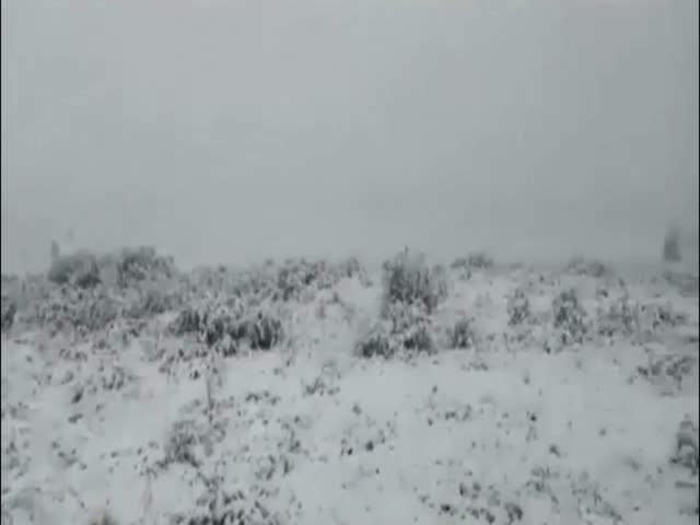 В Бурятии выпал снег посреди лета