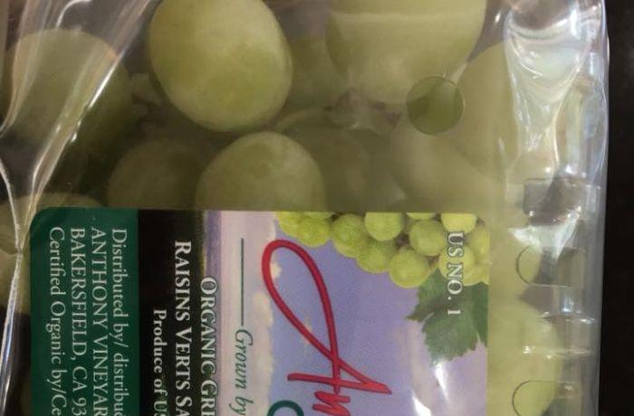 Страшная находка в упаковке с купленным виноградом (4 фото)