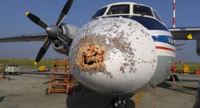 Повреждения авиалайнеров, которые не хотели бы увидеть пассажиры после приземления (15 фото)