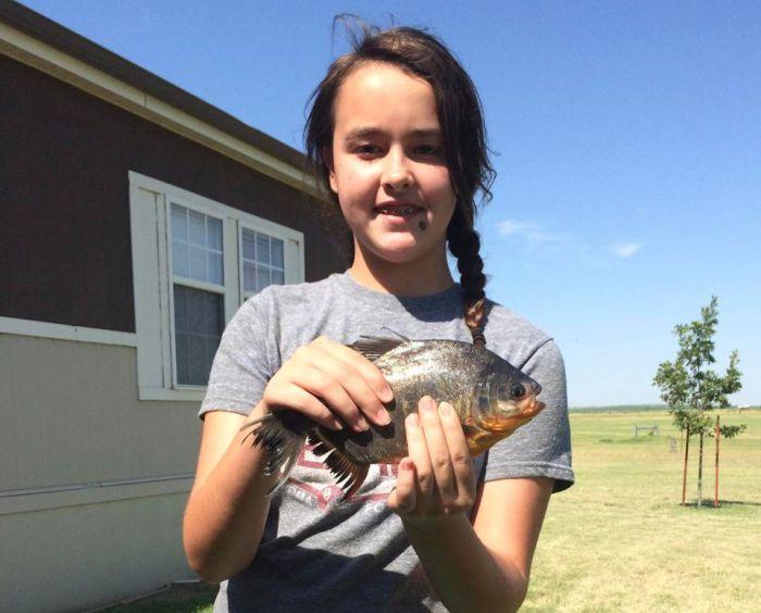 "Девочка поймала ""рыбу с человеческими зубами"" (3 фото)"