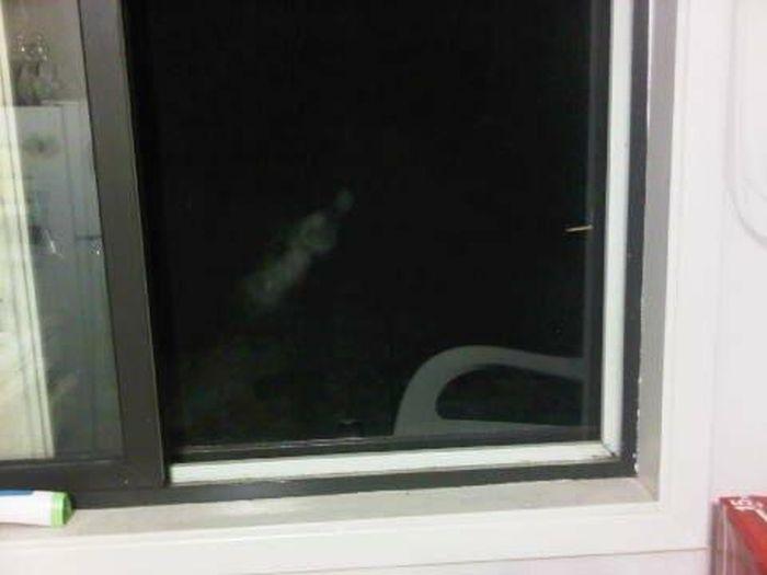 Необъяснимые фотографии привидений, которые стали загадкой (10 фото)