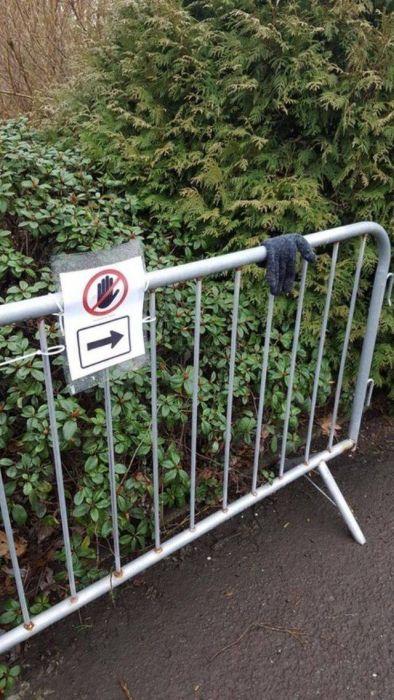 Люди, которым плевать на правила (20 фото)