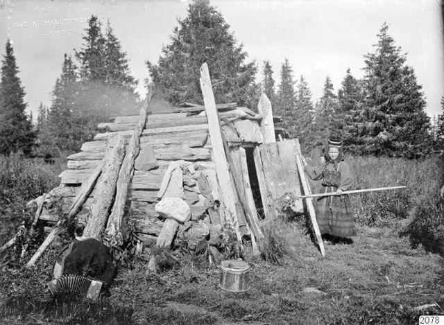 Жизнь крестьян в Архангельской губернии, 1910 год (18 фото)