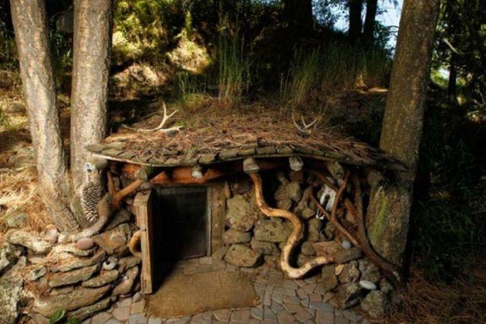 Уютный домик в дремучем лесу (9 фото)