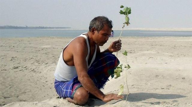 Житель Индии превратил умирающий остров в густой лес (13 фото)