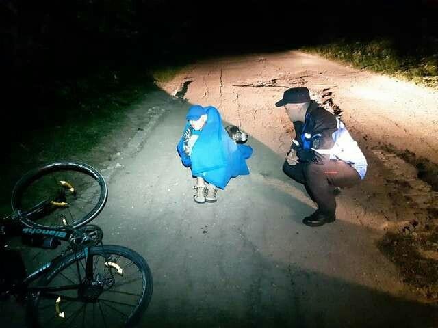 Бродячий пес всю ночь согревал раненного мужчину, который упал с велосипеда в горах (3 фото)