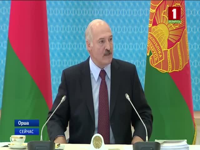 Александр Лукашенко пообещал наказать правительство за системные недоработки