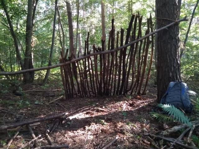 Выживание в лесу на протяжении 5 дней с минимальным снаряжением (11 фото)