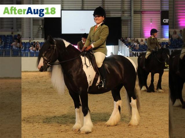 Спасенная 4 года назад лошадь стала победителем почетного конкурса (5 фото)