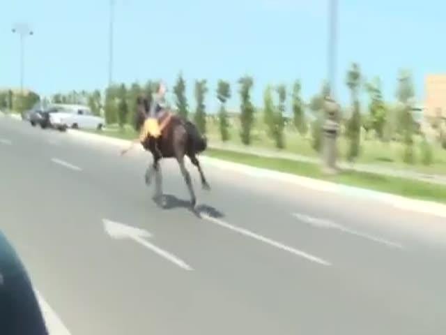 Потерял контроль над лошадью? Хотя нет, погодите...