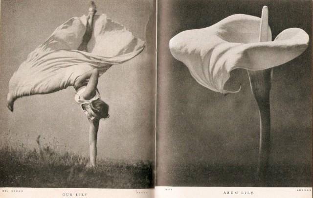 Интересные и редкие ретро-фотографии (25 фото)