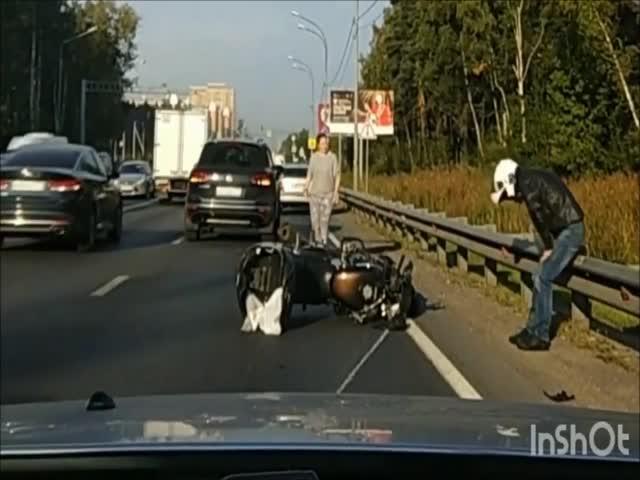Встреча мотоциклиста и лося