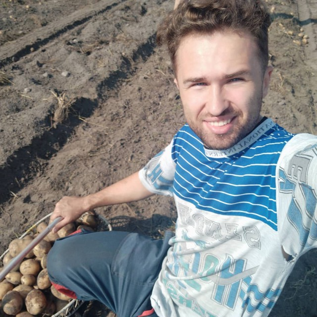 Картофельная лихорадка (38 фото)