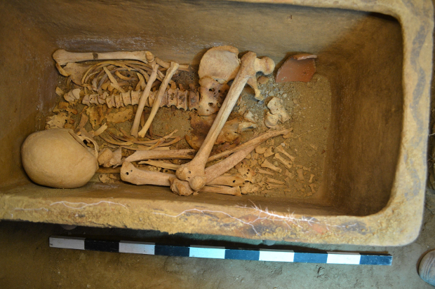 Греческий фермер случайно обнаружил древнюю гробницу (2фото)