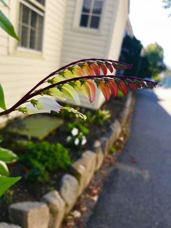 Чудеса природы (19 фото)