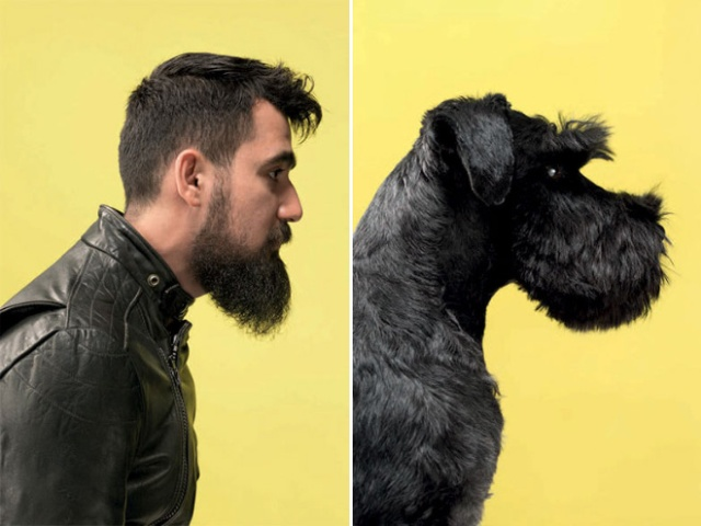 Собаки точь-в-точь, как их хозяева (10 фото)