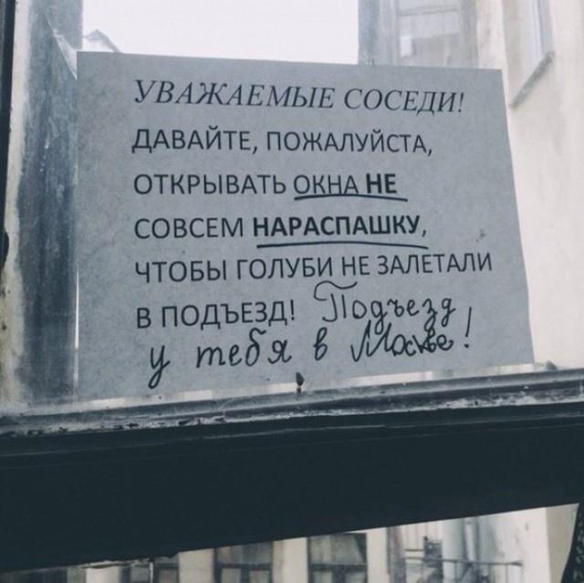 Объявления для соседей от жителей культурной столицы (7 фото)