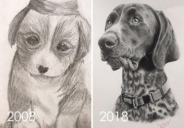 Прогресс мастерства в рисунках (30 фото)