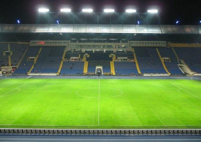 """Кроты испортили газон на стадионе """"Шахтера"""" (2 фото)"""