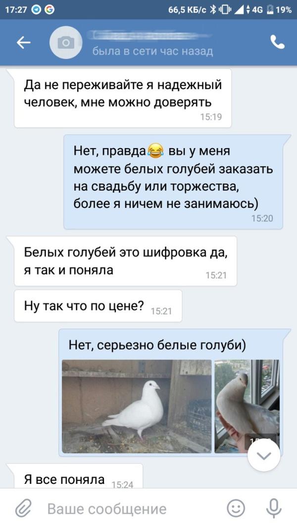 Разведение голубей и странные клиенты (3 скриншота)