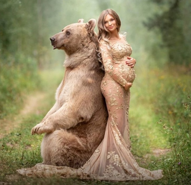 Медведь Степан - звезда кинематографа и фотосессий (22 фото)