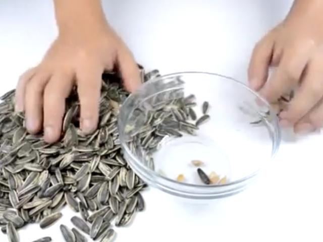 Надоело чистить семечки? Тогда это видео для вас!