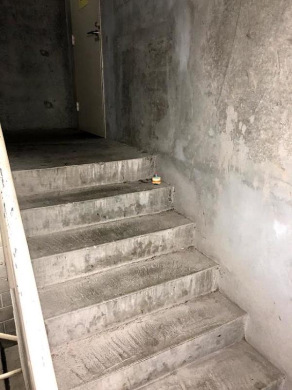 История одного мертвого таракан на лестнице (12 фото)