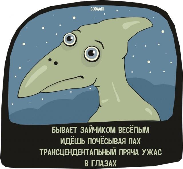 Странный юмор (33 фото)