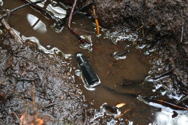 Участники поисковой операции нашли родственников павшего воина (7 фото)