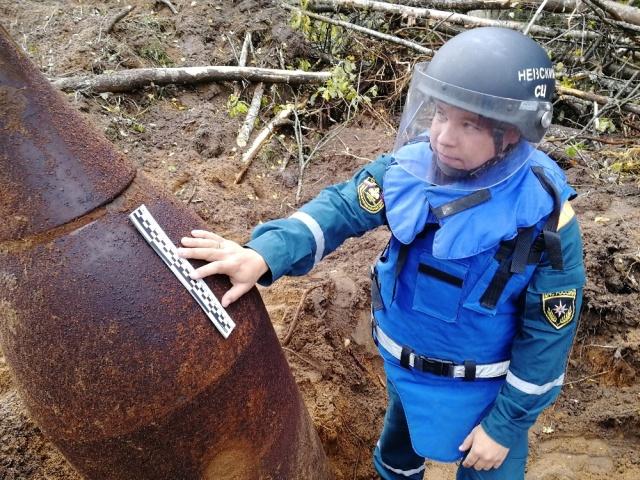 В Новгородской области взорвали авиабомбу весом около тонны (2 фото + видео)