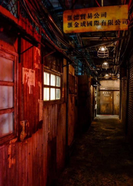 Криминальный район Гонконга, воссозданный в Японии (11 фото)