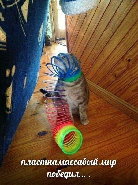 Нестандартный юмор с просторов сети (35 фото)