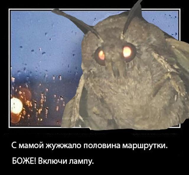 """Джессика Нигри изобразила """"мотылька"""" из известного мема (10 фото)"""
