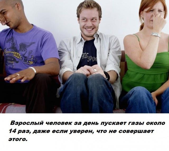 Бесполезные факты обо всем на свете (29 фото)