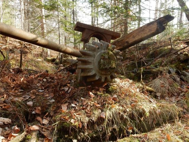Старинная паровая машина в лесу под Красноярском (6 фото)