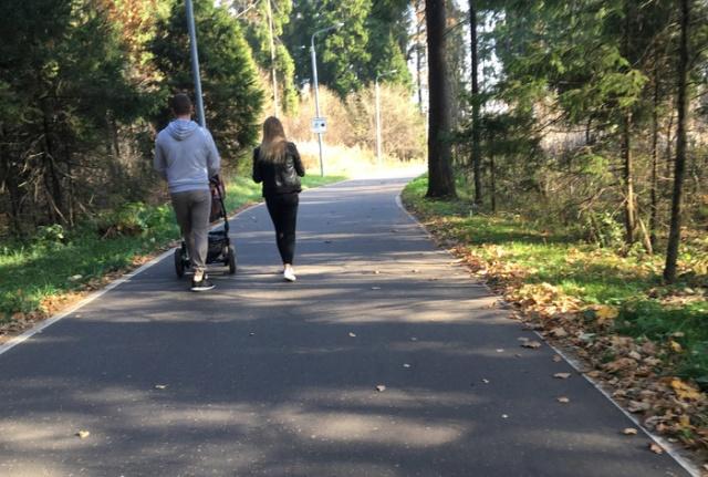 Лыжероллерная трасса для родителей с колясками? (3 фото)