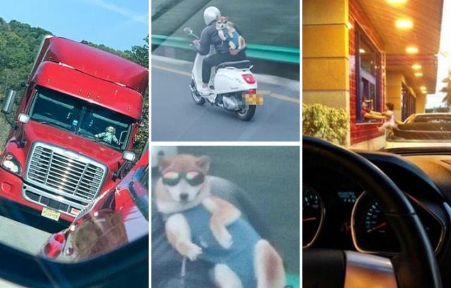 Фотографии с забавными деталями, которые не сразу замечаешь (25 фото)