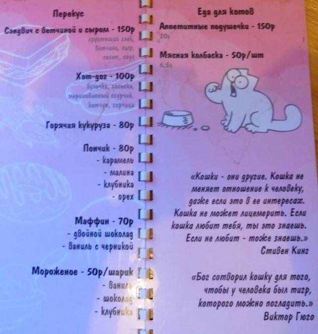 Кафе для любителей котиков в Калуге (16 фото)