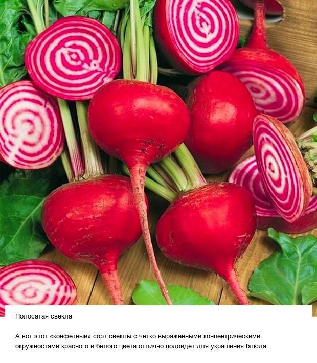 Странные овощи и необычные плоды, которые вас точно удивят (13 фото)