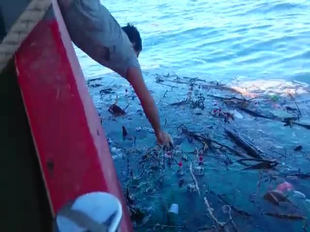 Море принесло подарки из Сочи в Геленджик