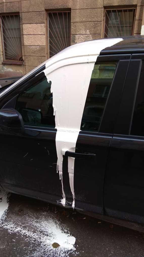 """Когда на автомобиль нагадила огромная """"чайка"""" (3 фото)"""
